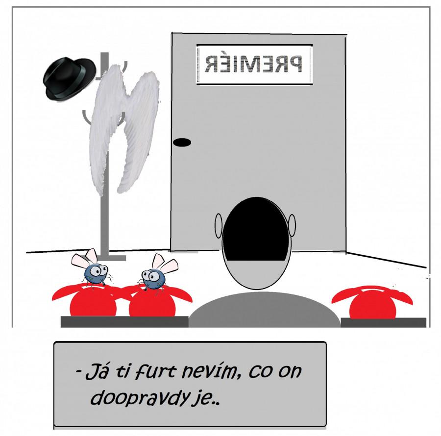 ABY SE V NĚM  BLECHA  VYZNALA!   NATOŽ PAK VOLIČ.  //(jdv./Pixabay.com,)