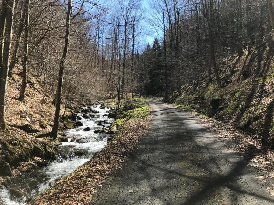 Cesta stoupá kolem říčky Merty.