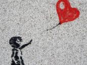 Maceší blog - práva a povinnosti nematek