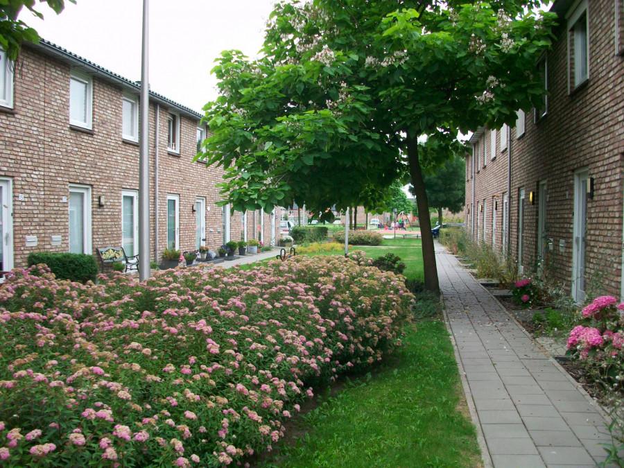 relativně chudší dostupné bydlení v Holandsku, a přesto archetypálně příjemné