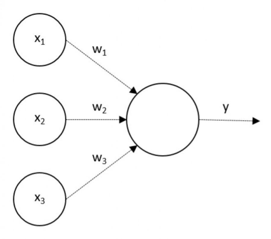 753375_article_photo_schematicke-znazorneni-neuronu_900x.jpeg