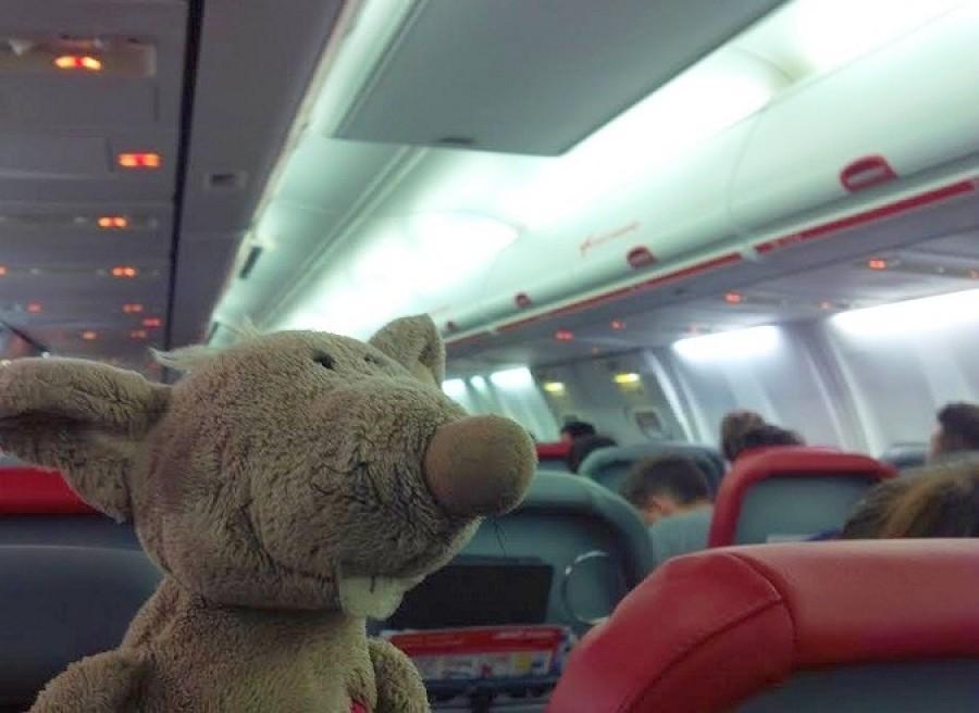 V letadle jsem byl celej nedočkavej, pořád jsem se ptal
