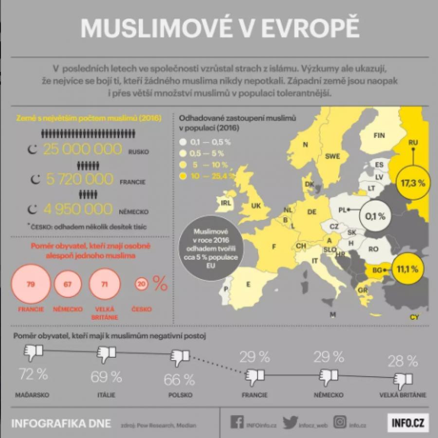 Muslimové v roce 2016 tvořili 5 % evropské populace. V té době v Česku 20 % lidí znalo osobně alespoň jednoho muslima.