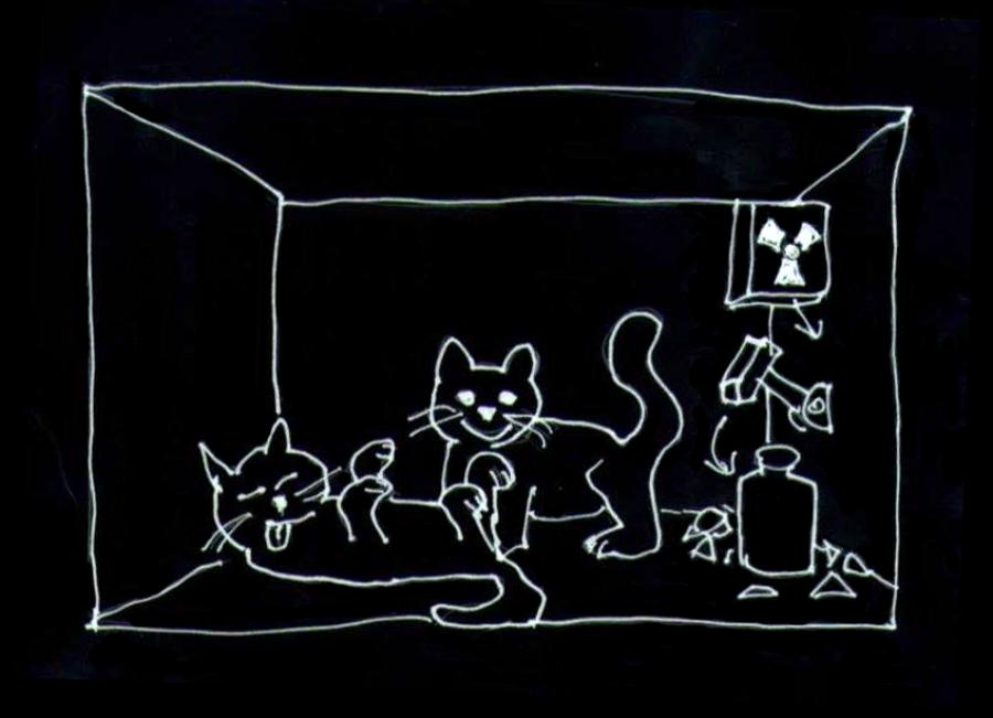 Schrödingerova kočka je mrtvá i živá současně, dokud neotevřeme krabici.