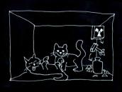 Není Schrödingerova kočka jen vtip?
