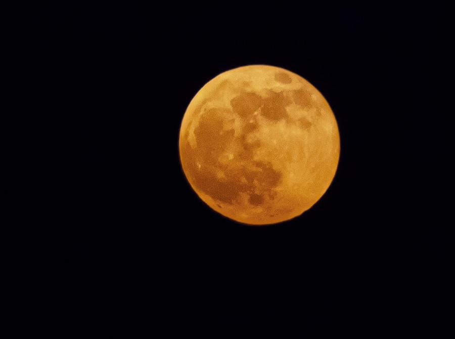 Oranžově zbarvený vycházející Měsíc, mírně po úplňku. 21. ledna 2019, 17.15 hod