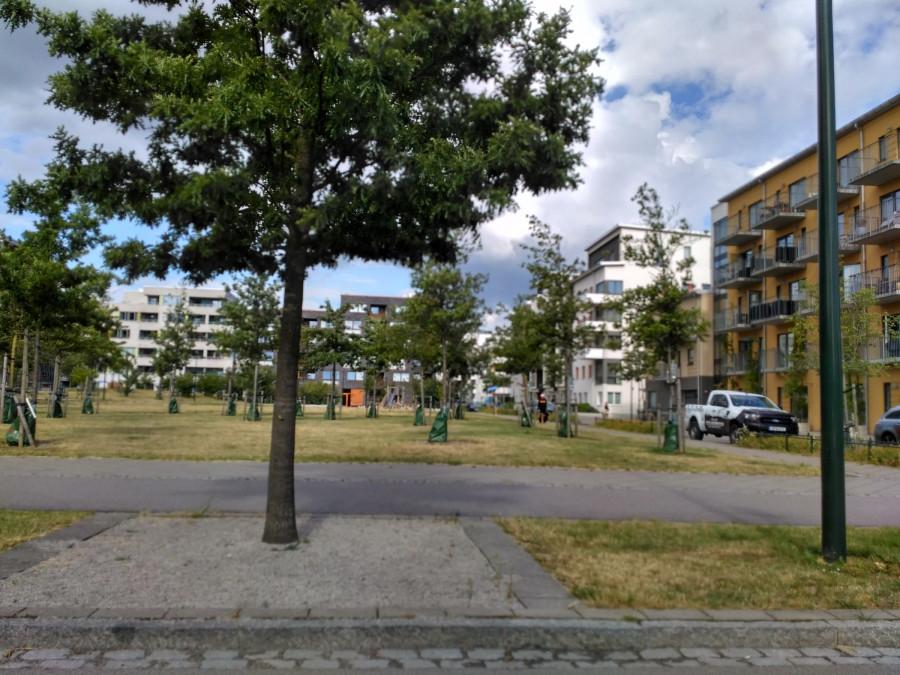 velice příjemné a kultivované prostředí nové zástavby Malmo, Švédsko