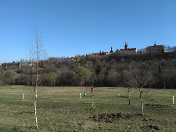 pohled na svah Bukovka