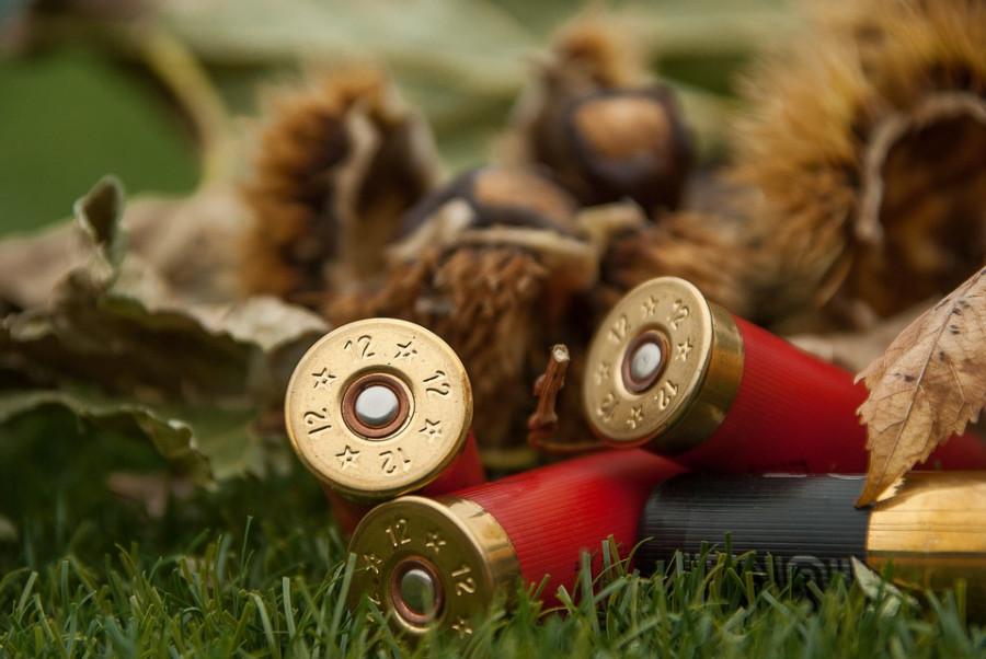 Olověné střelivo nemá srovnatelné alternativy co do ceny, bezpečnosti pro střelce i ranivosti.