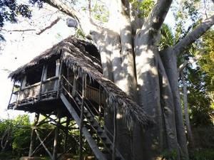 Můj dům na Mafia island