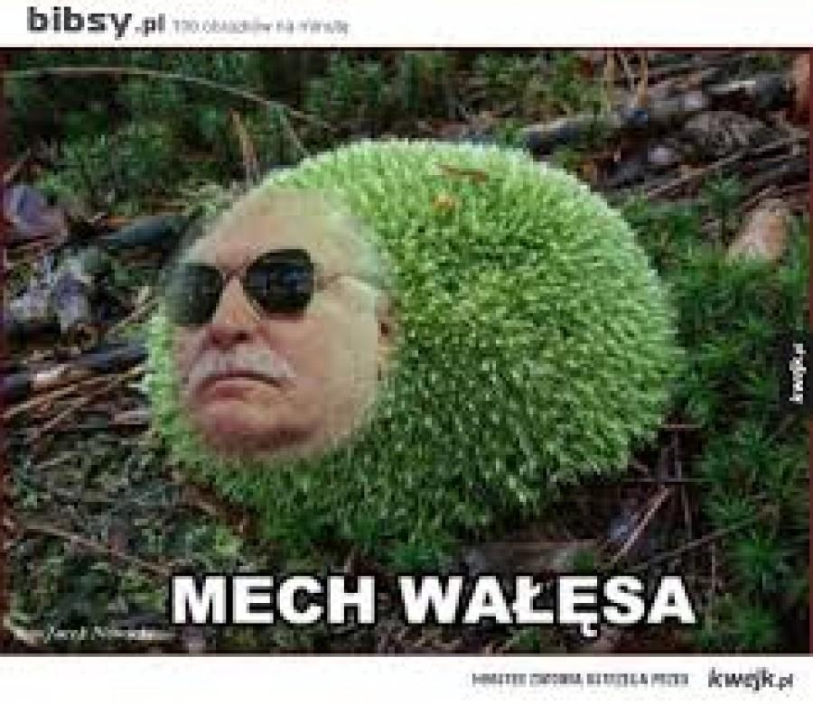 Mech Walesa  Dělnický kádr, elektrikář a placený agent CIA foukl na začátku 90. let minulého století se svým sparingpartnerem Vaklafem Haflem  na krysařovu píšťalku, čímž započalo ponuré období temna, sociálního i vzdělanostního úpadku našich zemí, devastace funkčního soběstačného hospodářství, protidemokratické rozdělení Československa, zavlečení našich zemí do teroristického protislovanského paktu  NATO, nastala doba anglo-amerických zločinných válek, yankeeského vyvražďování obyvatel svobodných národů, rozkladu mezinárodního práva, nástupu (ultra)pravicových diktatur, libovolného svrhávání legitimních vlád pomocí administrativami USA vyvolávaných barevných kontrarevolucí a tragického čekání na III. světovou válku.