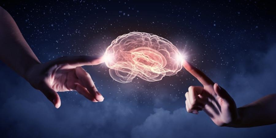 Kolik náhod bylo potřeba ke vzniku lidské inteligence?