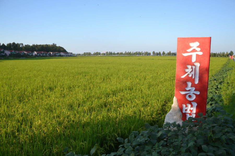 주체농법: Zemědělství Ču-čche.