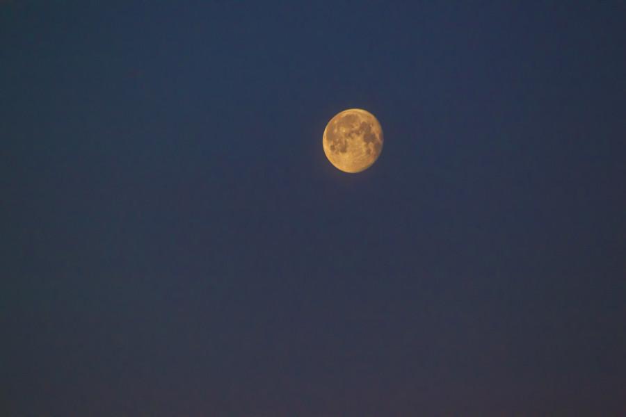 Ranní Měsíc, velkopáteční, už znatelně ubývající... (10. dubna 2020)
