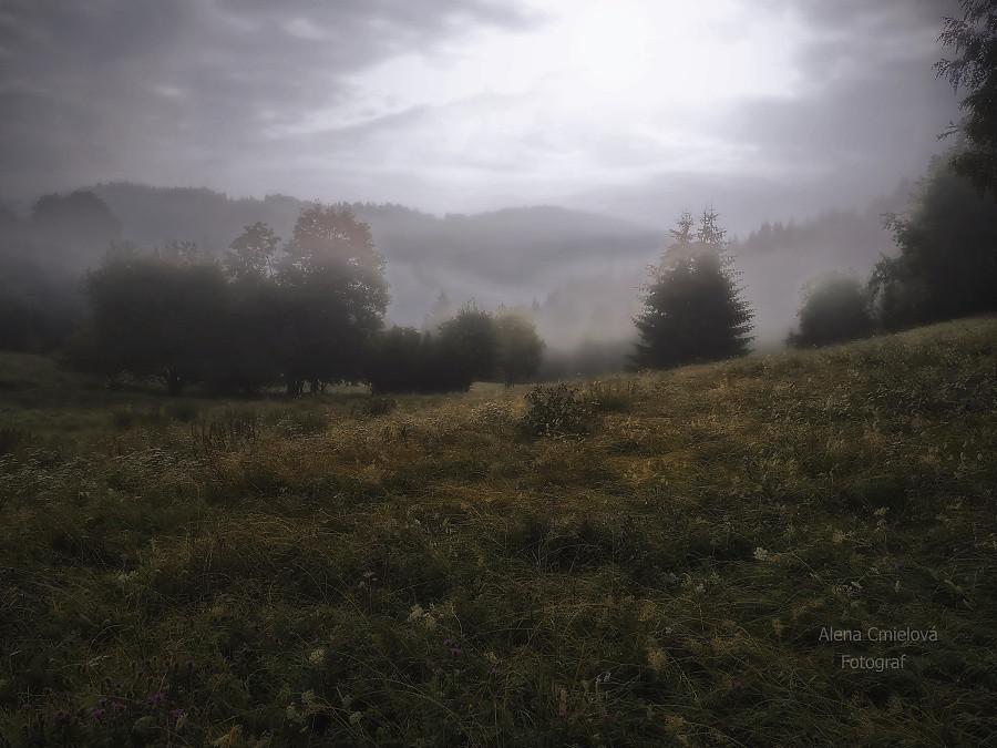 Ráno v lesích na hranicích  Beskyd a Slovenska